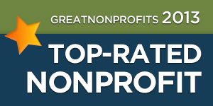 2013 Top Nonprofit